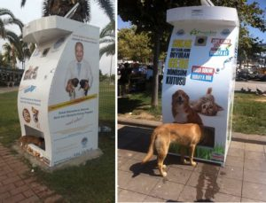 Even your pets profit if you recycle!