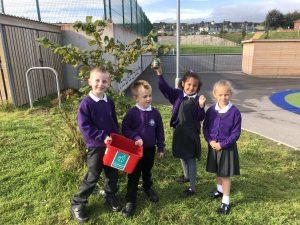 Recycle Week Case Study: Ysgol Maes Y Felin, Holywell