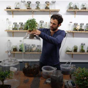 Planter dans un pot en verre